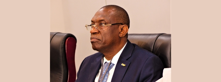 New Executive Committee appointed in Mali